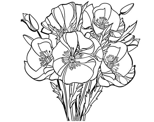 Раскраски Цветы - Распечатать или скачать бесплатно