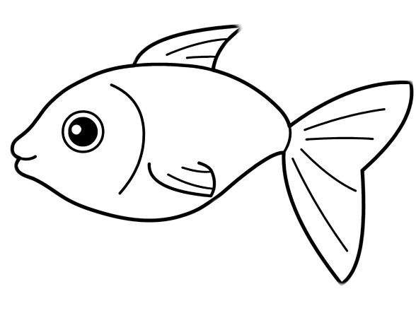 Большая коллекция раскрасок рыб 130 штук - Распечатать или скачать бесплатно