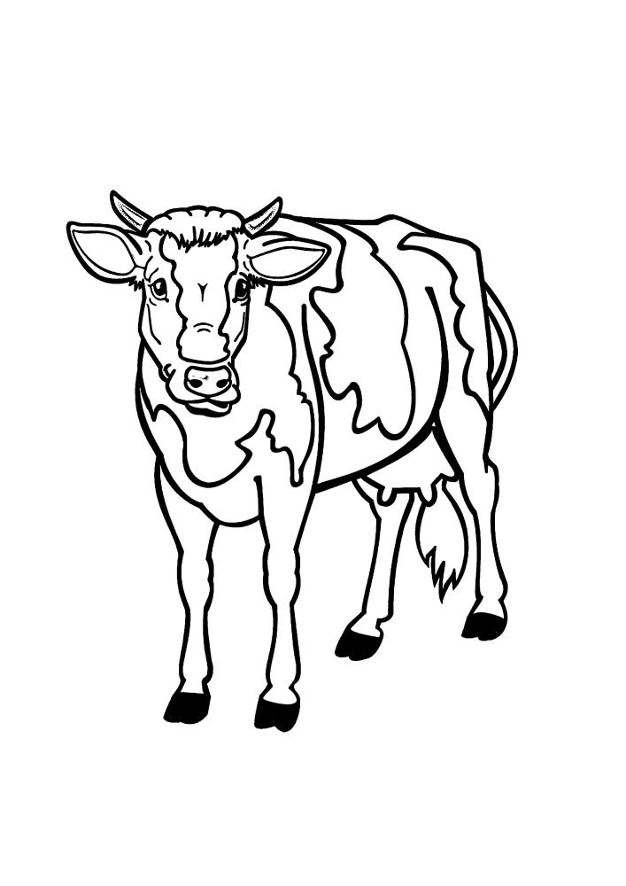 Корова - раскраска