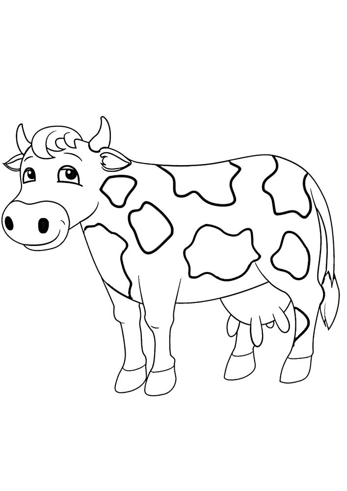 Стесняющаяся корова