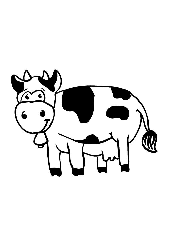 Чёрно-белая корова