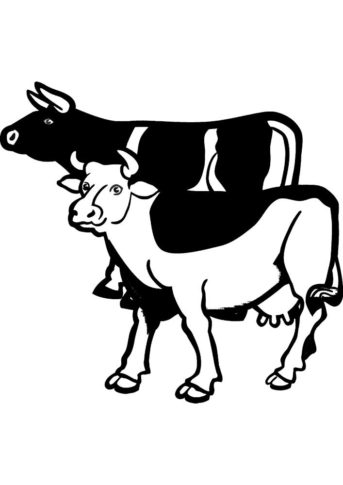 Коровы разных цветов.