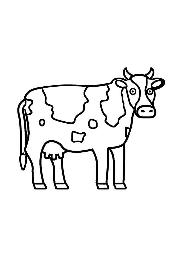 Популярное домашнее животное - корова