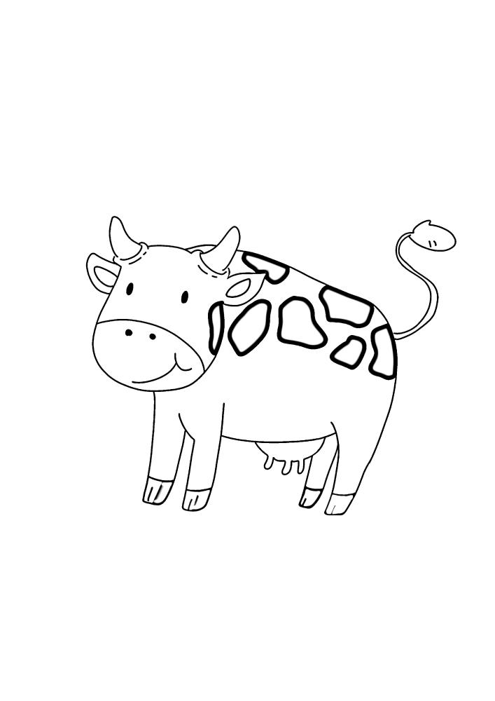 Корова смотрит вперёд