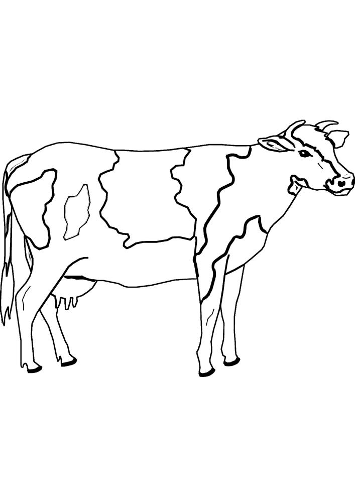 Корова - вид сбоку