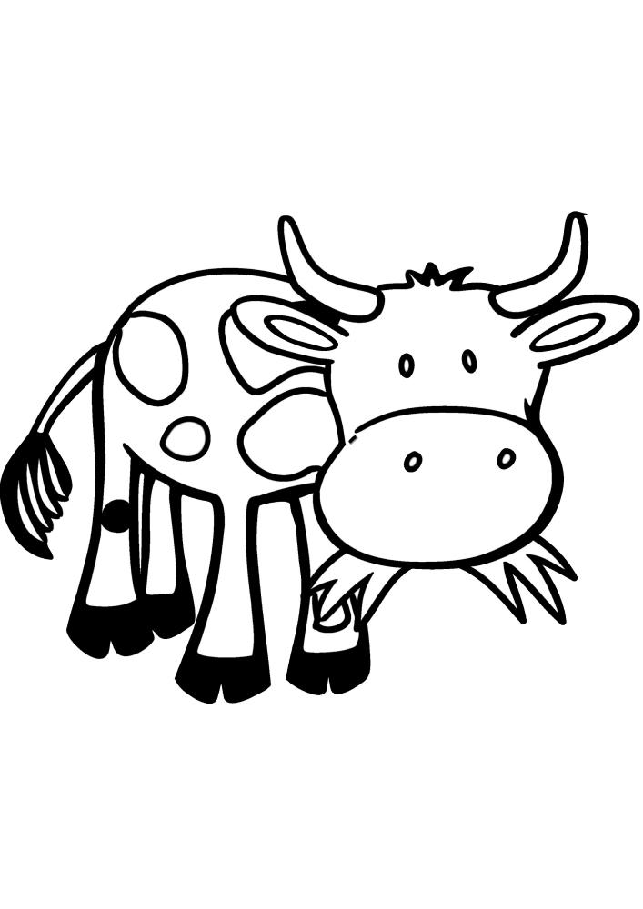 Корова жуёт траву - раскраска для детей
