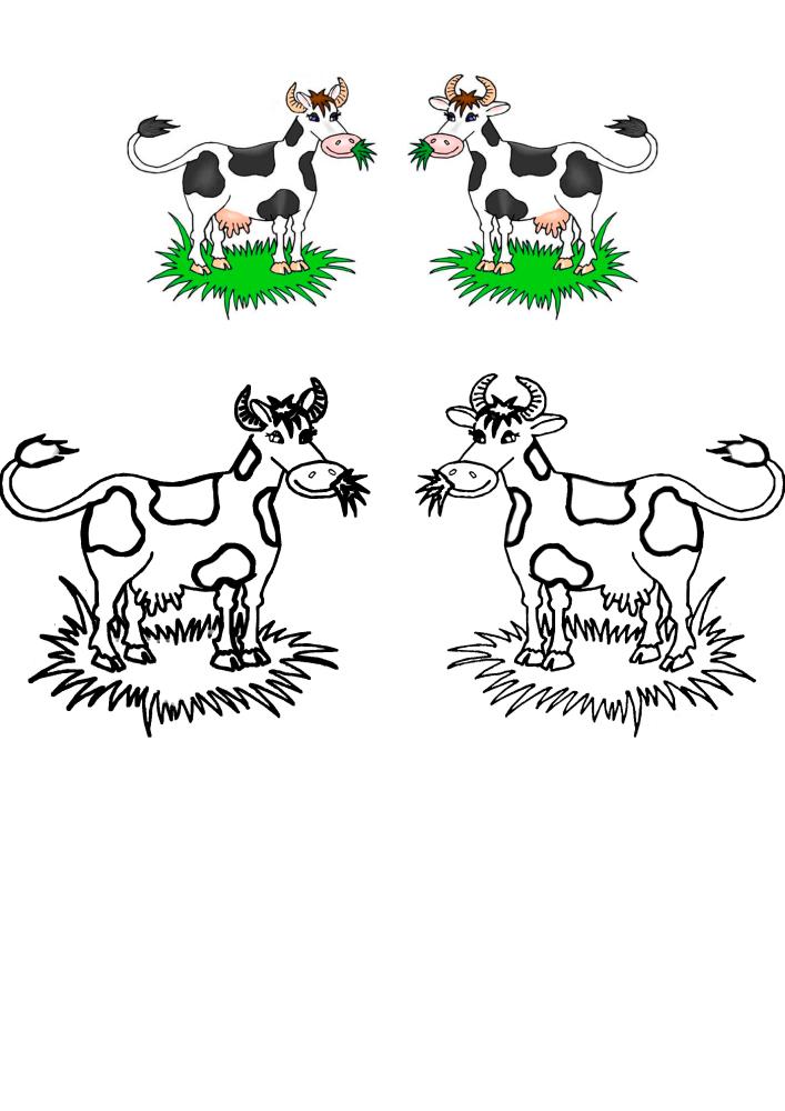 Две коровы жуют траву - чёрно-белое и цветное изображения в одной картинке