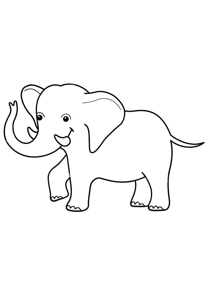 Маленький слон с большими ушами