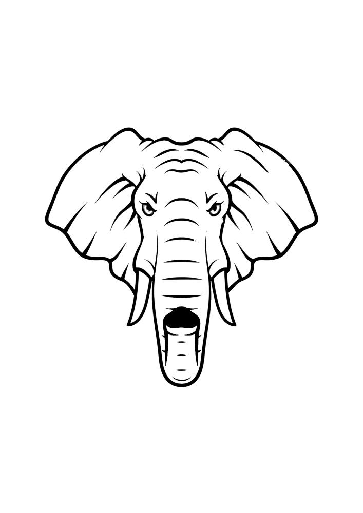 Недовольный слон