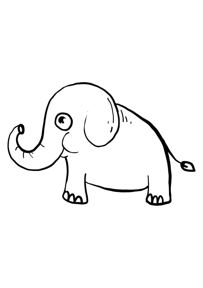 Маленький слон - раскраска для малышей
