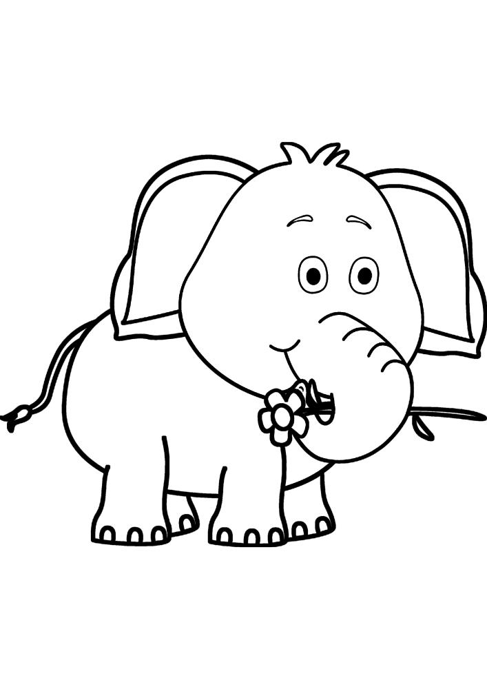 Слон держит хоботом цветок - он хочет подарить его своей маме