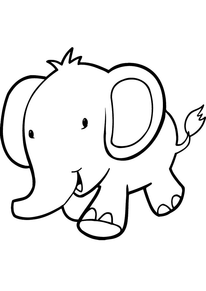 Бегущий слонёнок