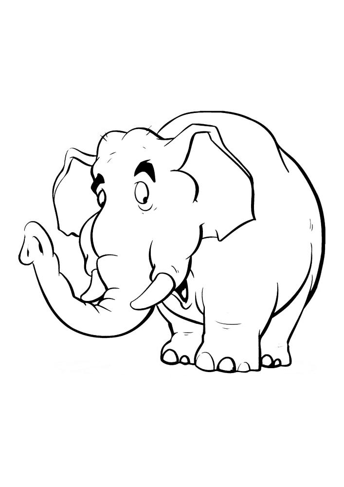 Насторожившийся слон