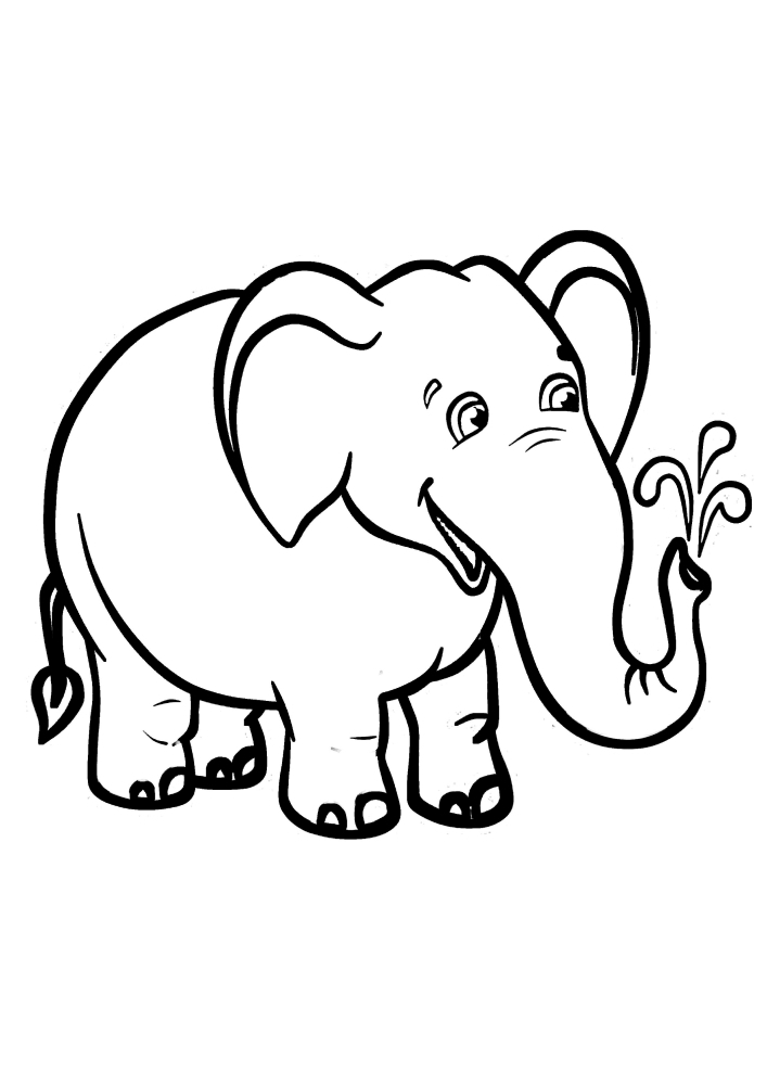 Слон веселится, пуская воду из хобота