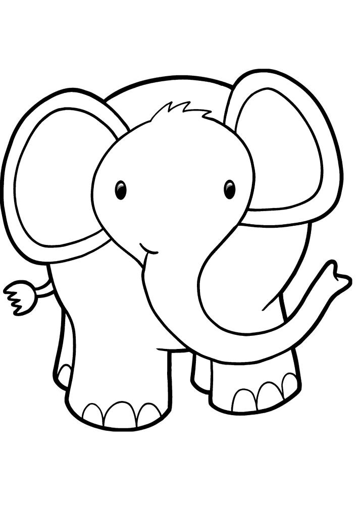 Мило шагающий слонёнок