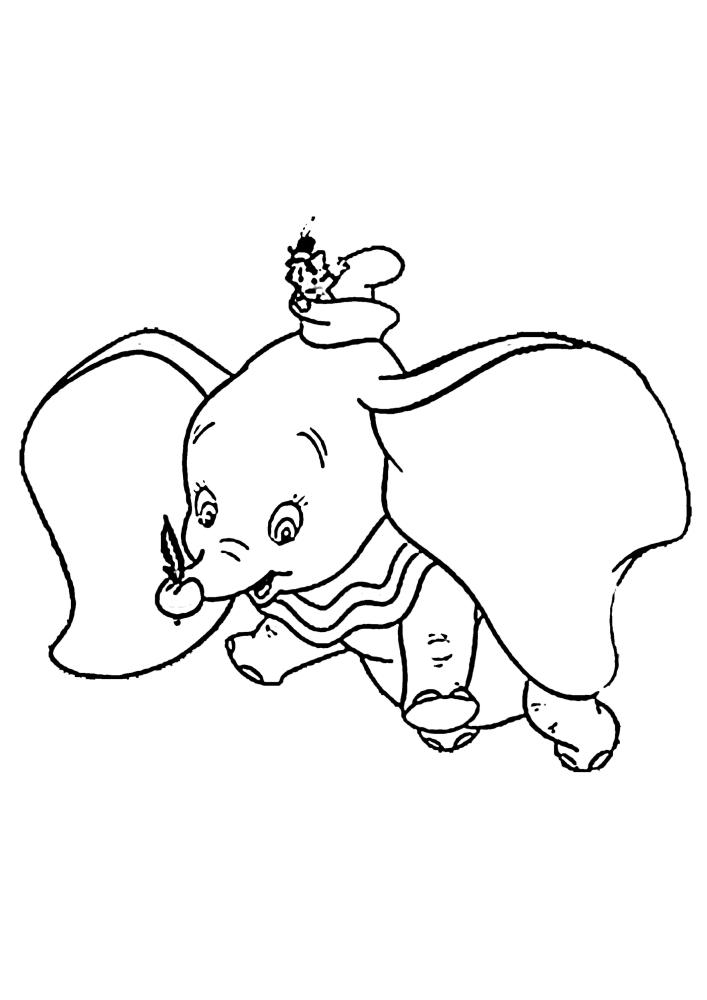 Тимоти сидит на слоне.