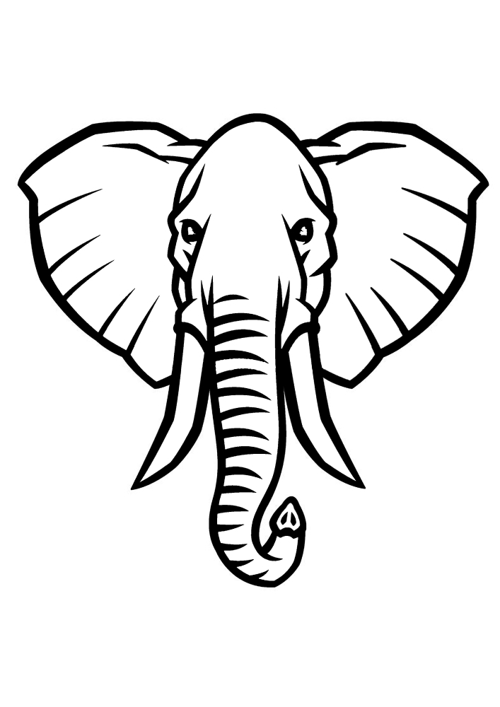 Мордочка слона - раскраска