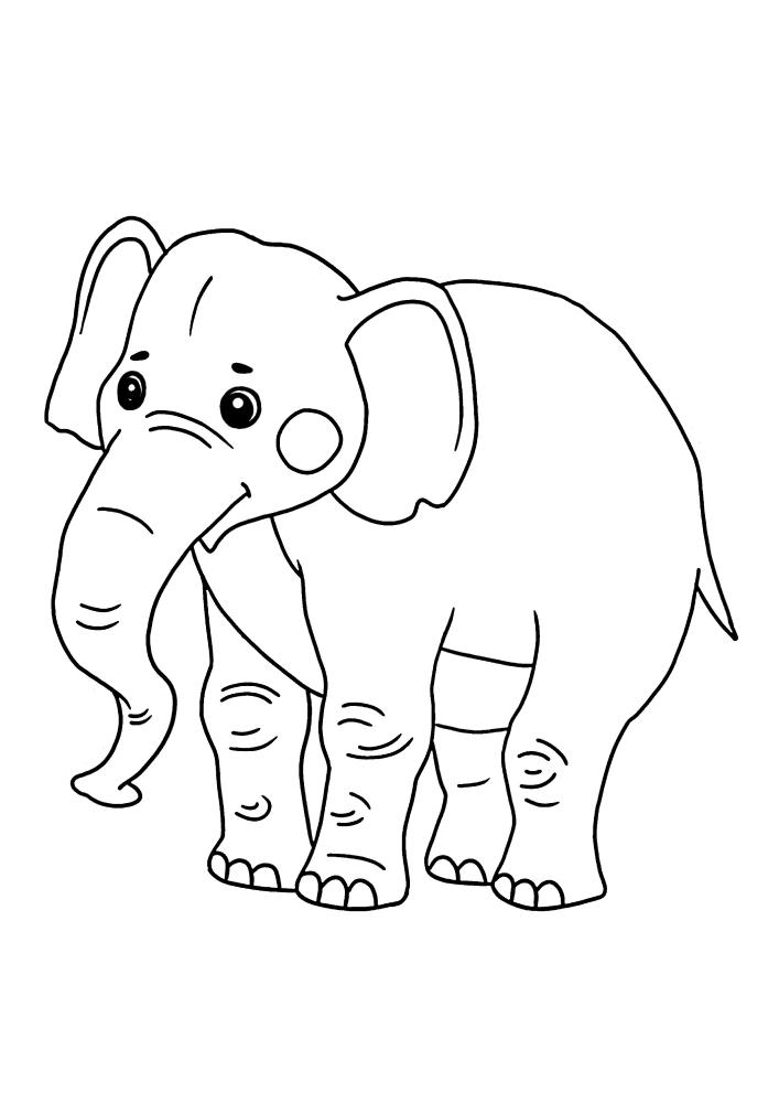 Милый слон - чёрно-белое изображение