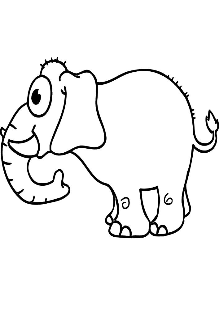 Слон - раскраска для малышей