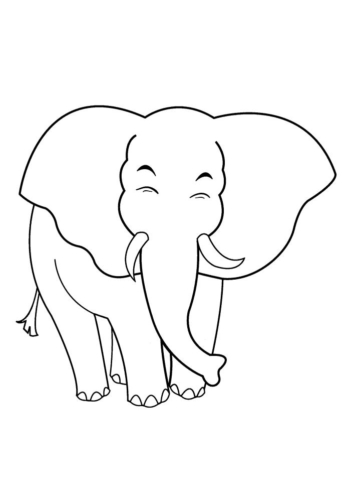Стесняющийся слон