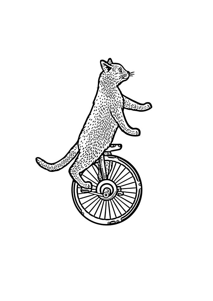 Кот на одноколёсном велосипеде