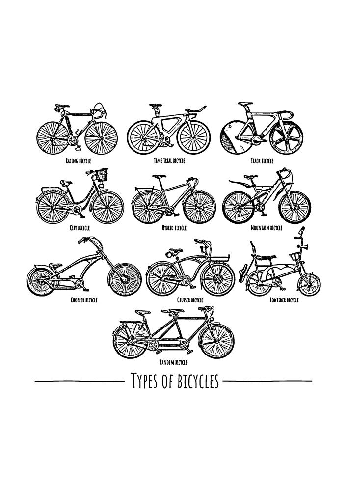 Различные виды велосипедов