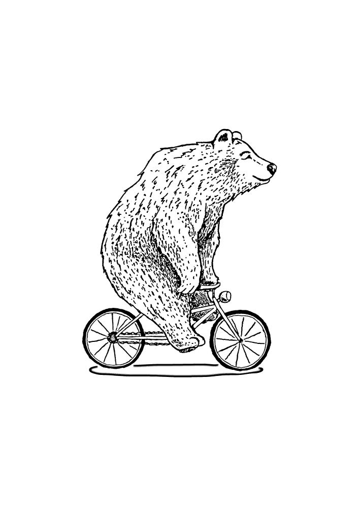 Медведь на велосипеде - раскраска