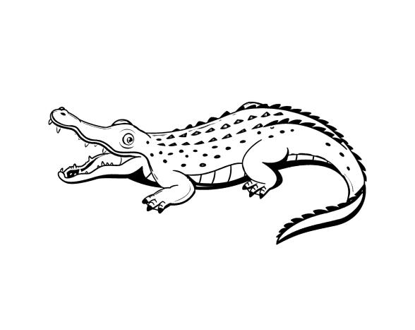 Раскраски Крокодилы для детей. 120 изображений - самая большая коллекция. Распечатать или скачать бесплатно.