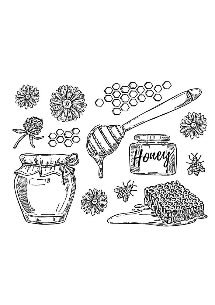 Мёд, соты и цветы - раскраска