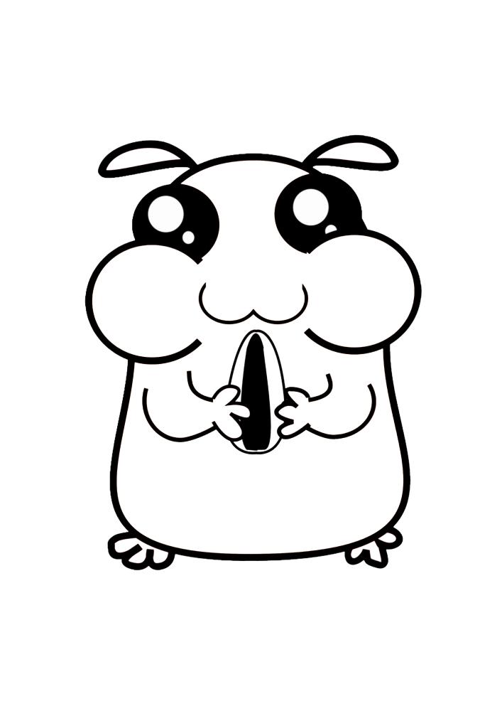 Милый хомяк держит семечку - раскраска
