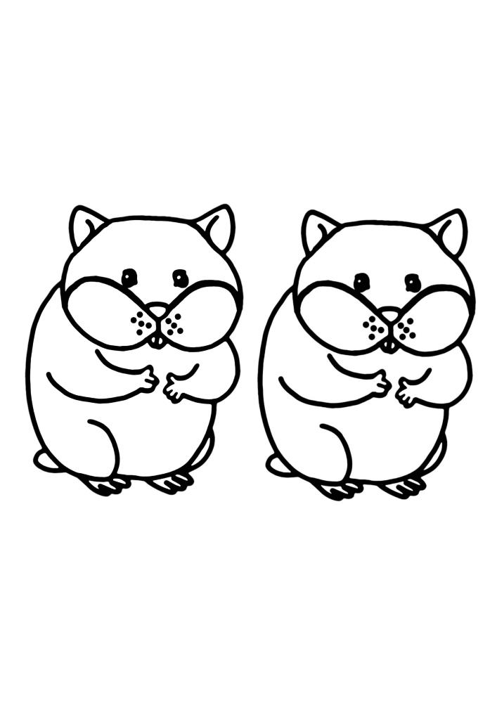 Два одинаковых хомяка - можно разукрасить каждого в разный цвет