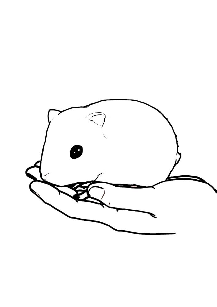 Хомяк сидит на руке - раскраска