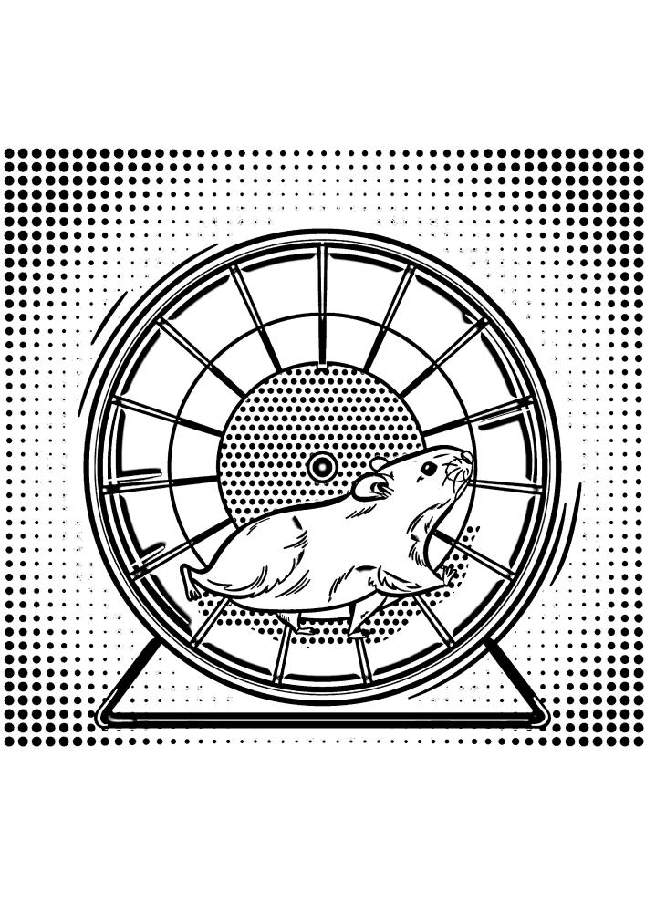 Хомяк играется в своем беговом колесе