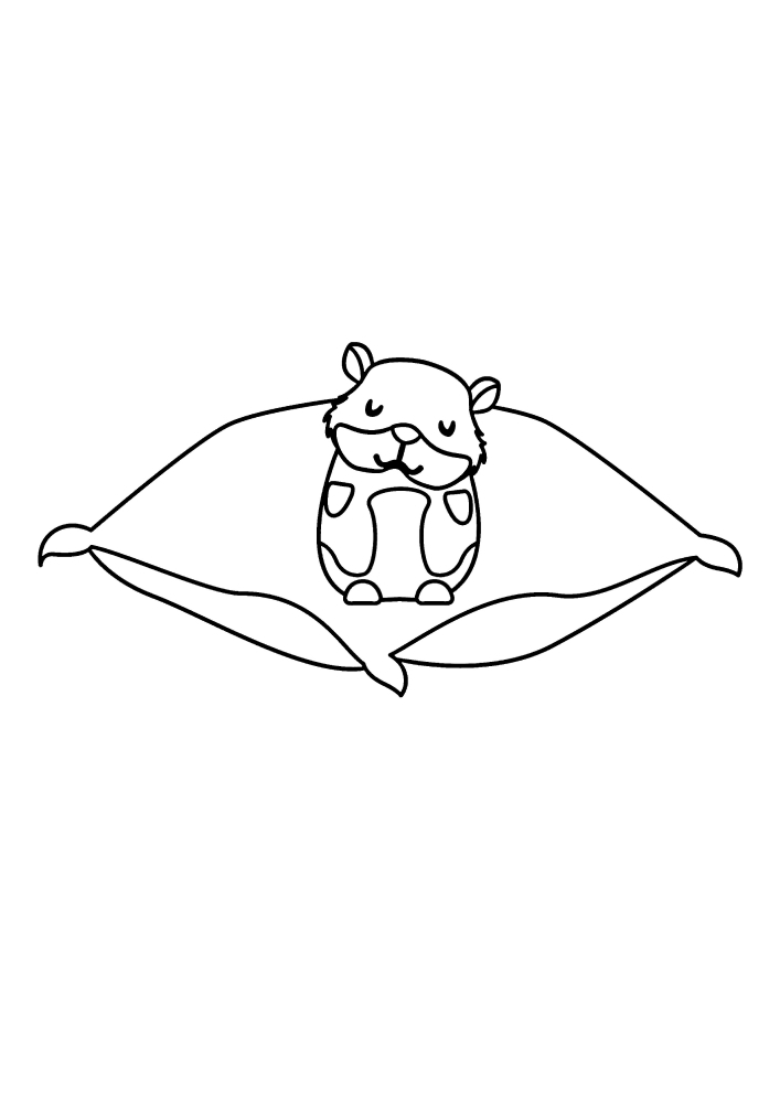 Хомяк на подушке