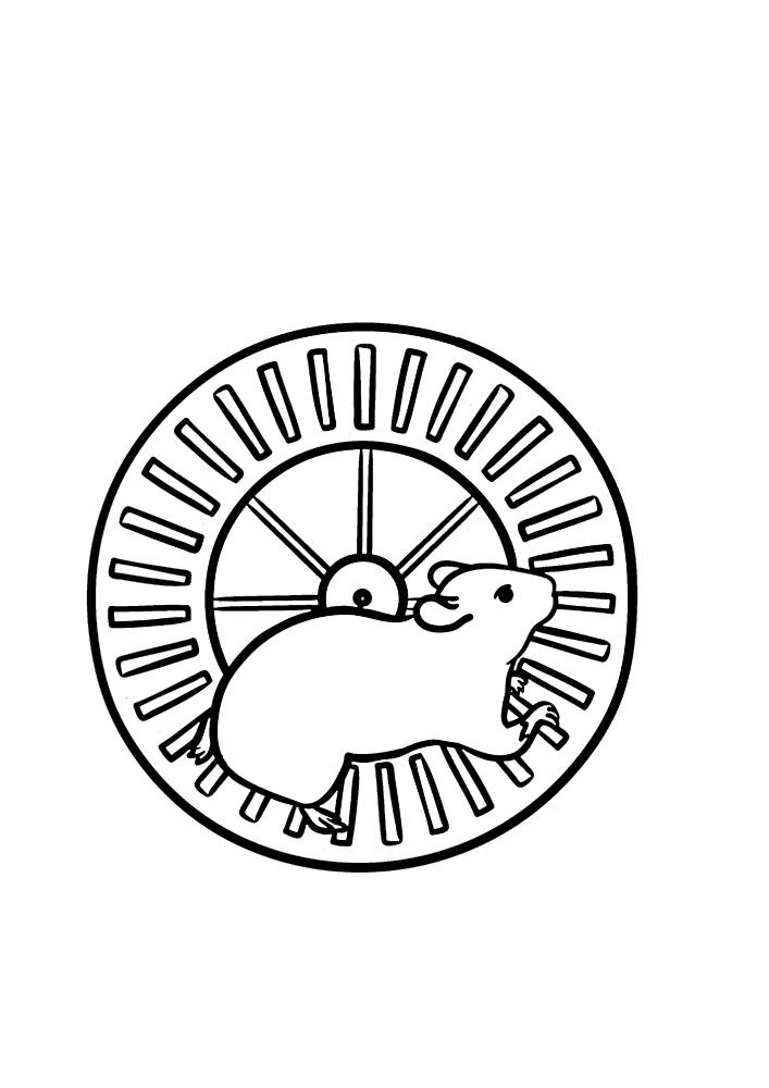 Хомяк в колесе - раскраска для детей