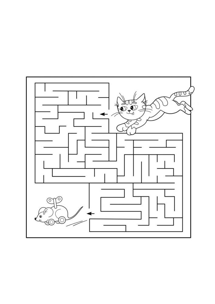 Кот гоняется по лабиринту за игрушечной мышкой