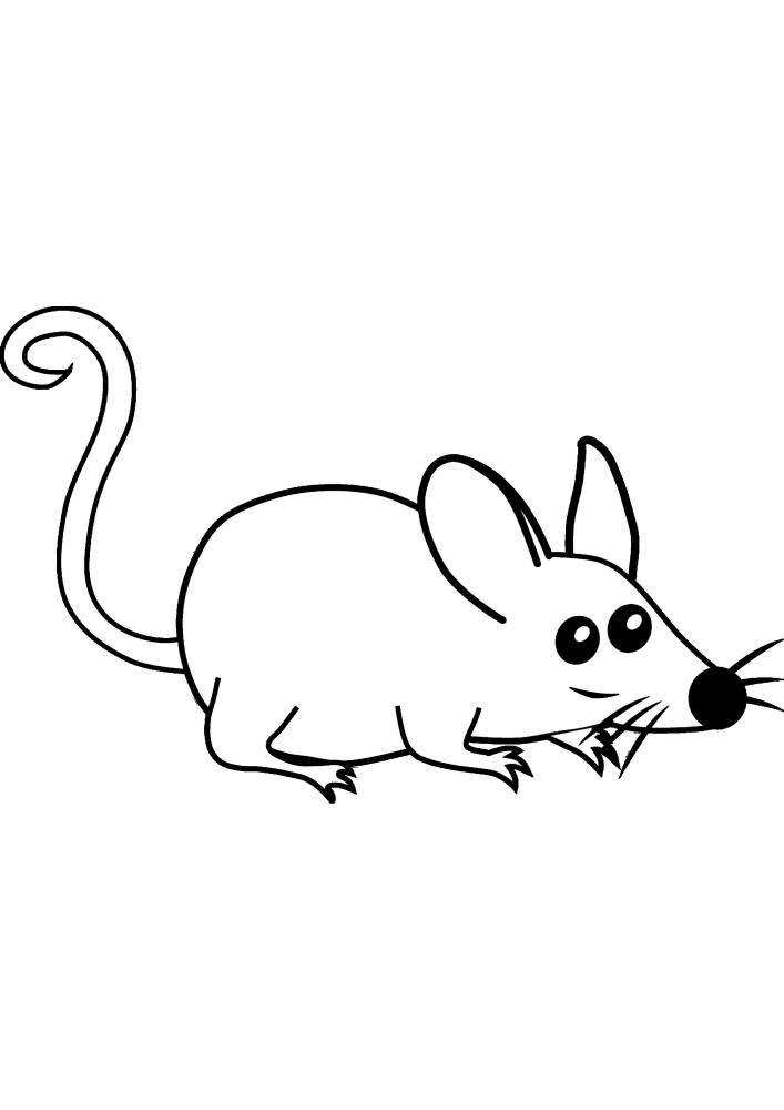 Мышка учуяла сыр
