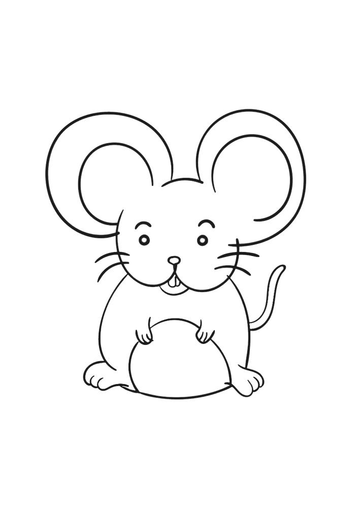 Мышь с большими ушами