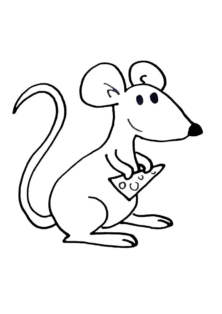 Мышка держит кусок сыра