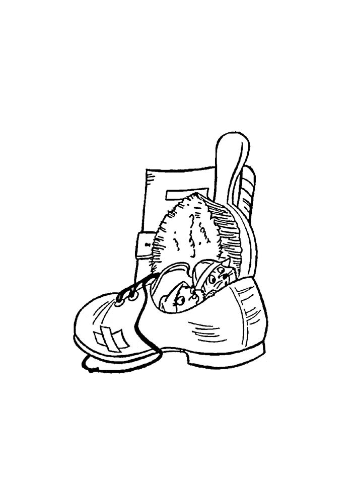 Грызуны спрятались в обуви