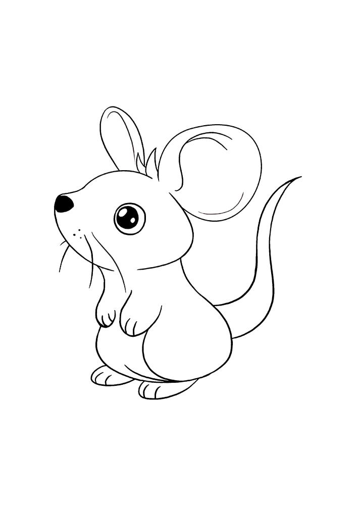 Милая маленькая мышка