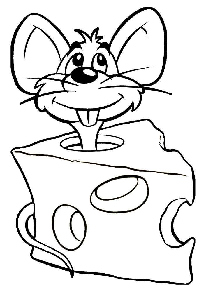 Мышь в сыре - раскраска