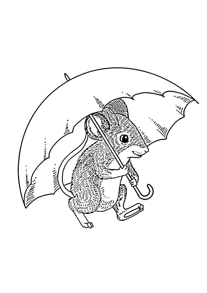 Мышка спряталась под зонтом - детализированная раскраска