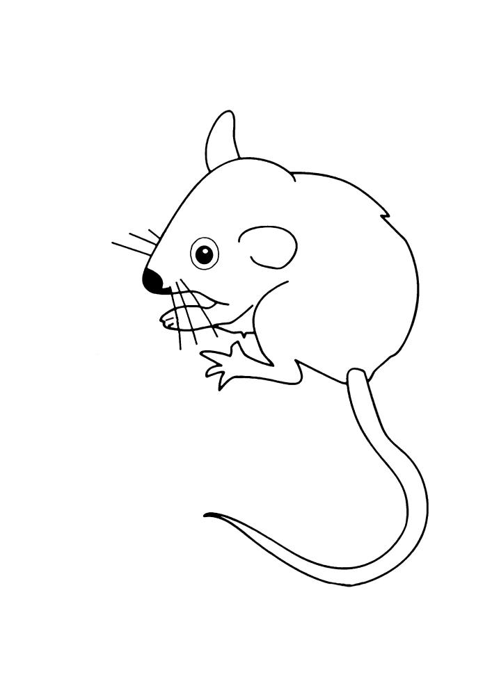 Маленькая мышь - раскраска